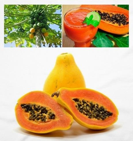propiedades curativas y beneficios de la papaya