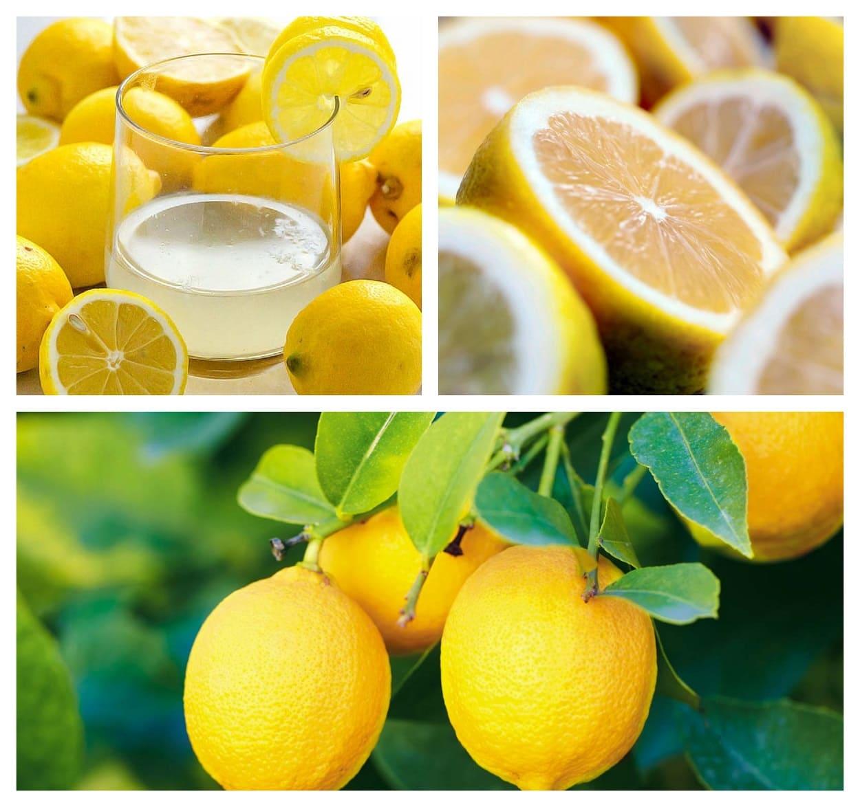 Beneficios del limón. Su información nutricional y propiedades