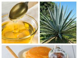 beneficios para la salud del néctar de agave. Datos nutricionales y mucho más